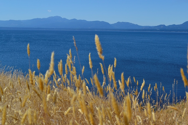 Hornby Island - Helliwell Park