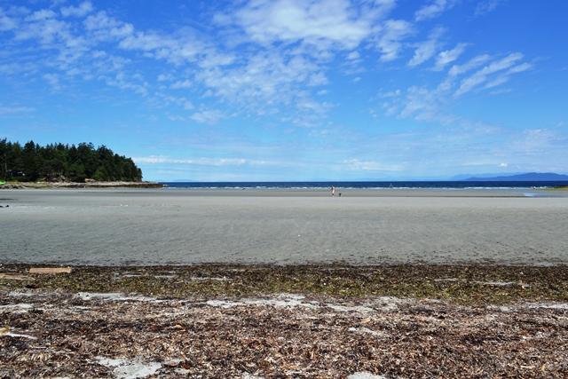 Hornby Island - Whalers Station Beach