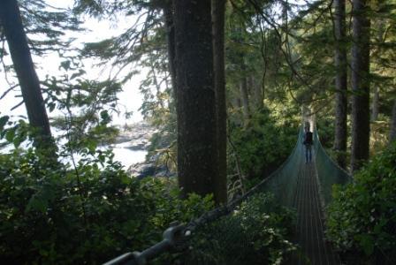 Juan de Fuca Trail, Haengebruecke