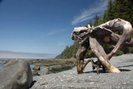 Juan de Fuca Trail, Vancouver Island