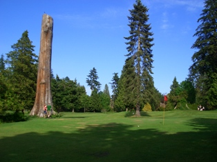 Pitch and Putt - Stanley Park