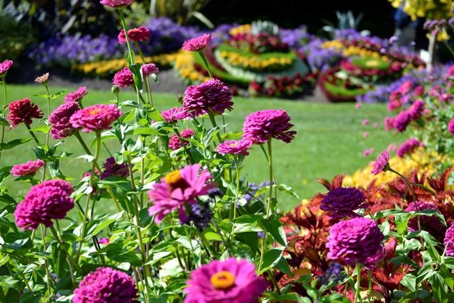 Queen Elizabeth Park, Gartenanlage