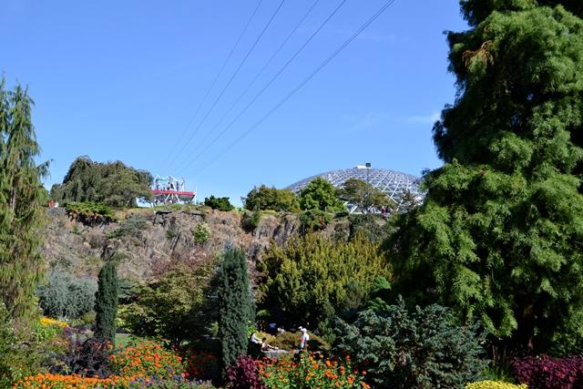 Queen Elizabeth Park, Zipline