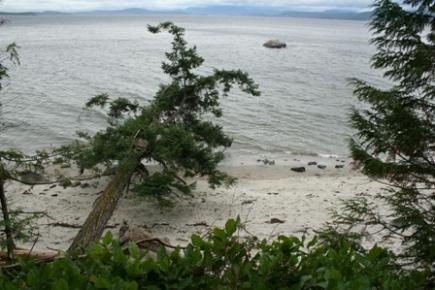 Savary Island Strand