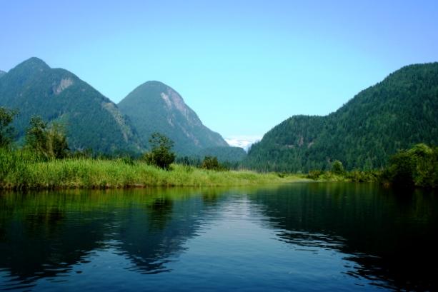 Widgeon Creek