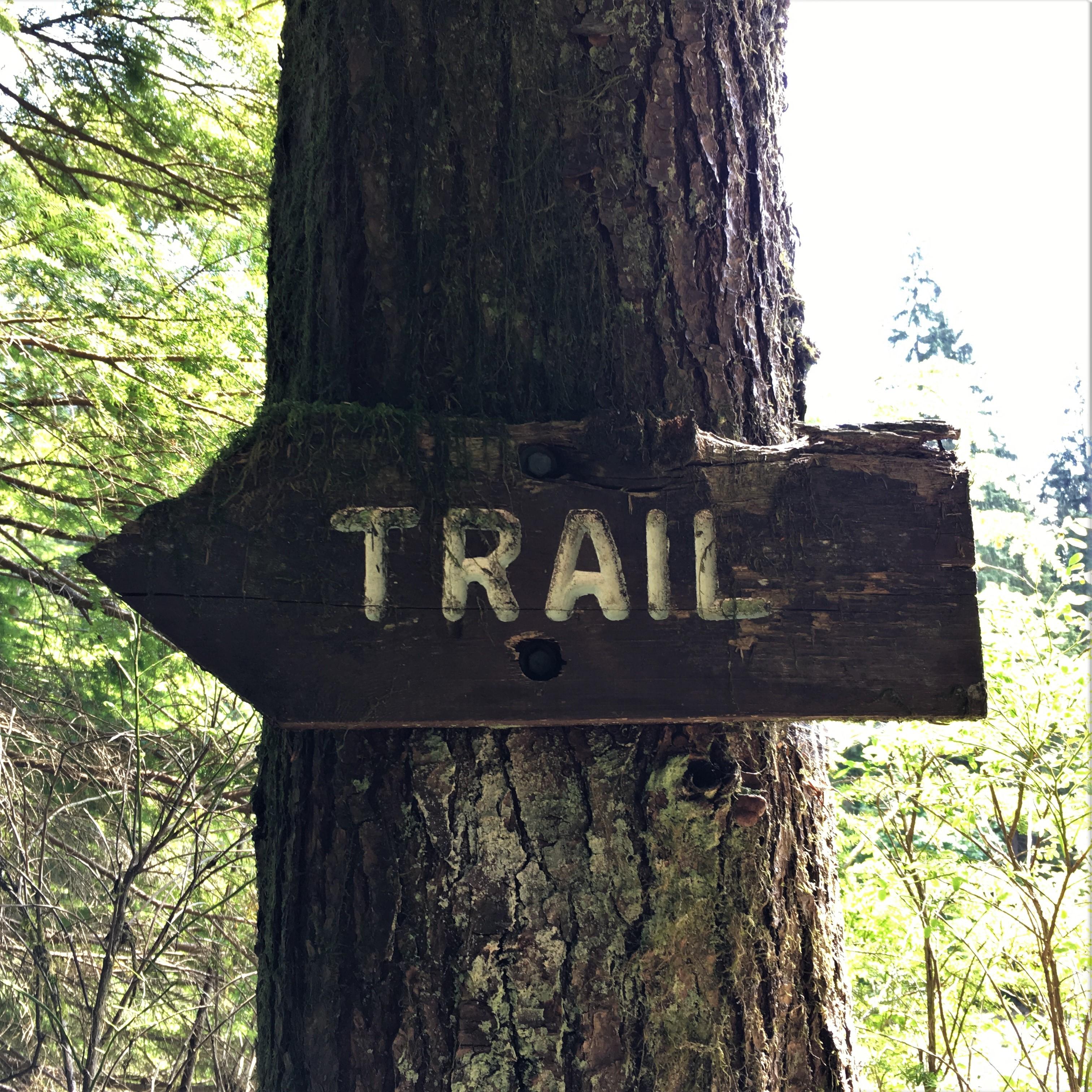 Widgeon Creek Wanderung