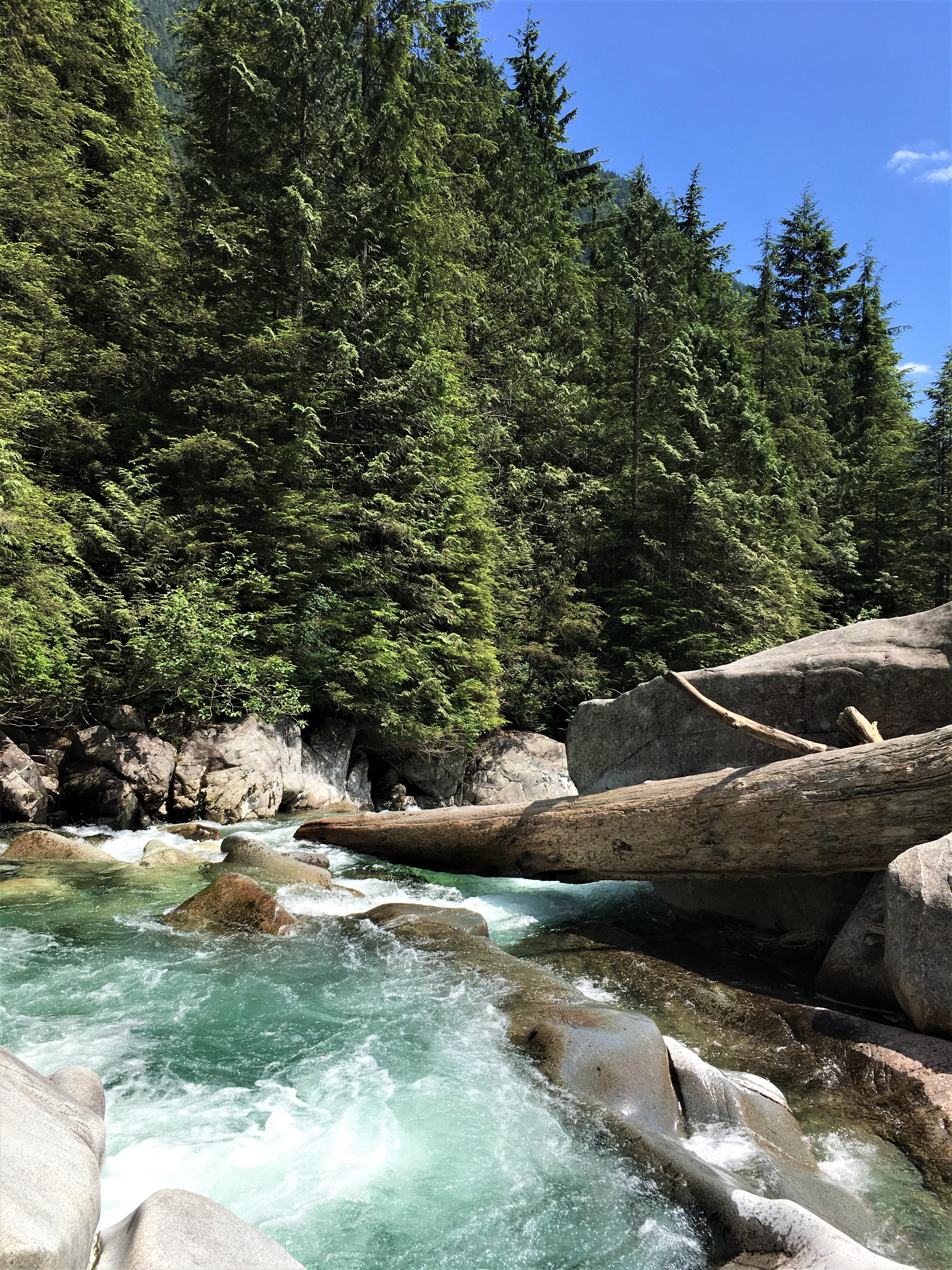 Widgeon Creek Wasserfall