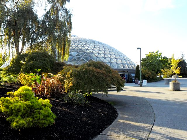 Bloedel Conservatory, Vancouver