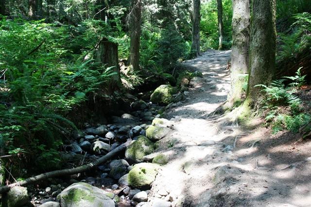 Burnaby Mountain Wanderweg