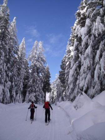 Cypress Mountain Langlauf