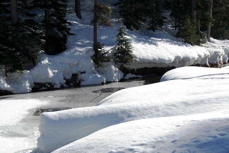 Manning Park Schnee