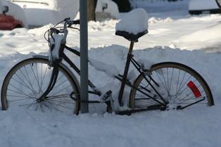 Vancouver Winter 2008