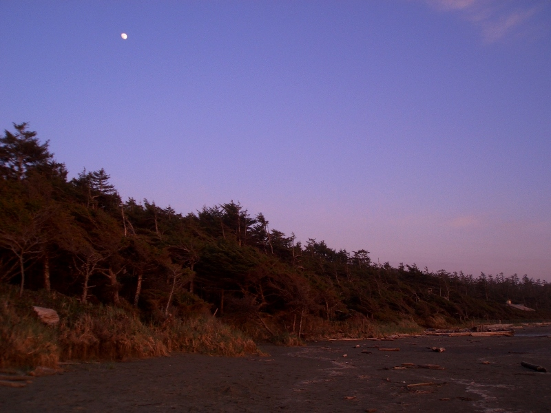 Tofino, Abend am Strand