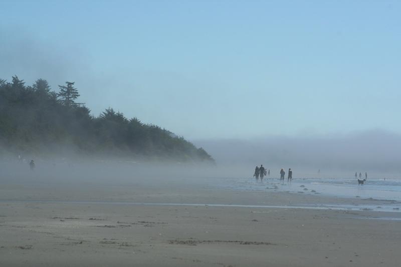 Morgennebel am Strand