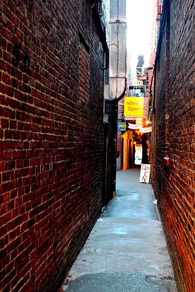 Victoria Fan Tan Alley