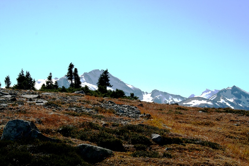 Whistler Mountain Hike